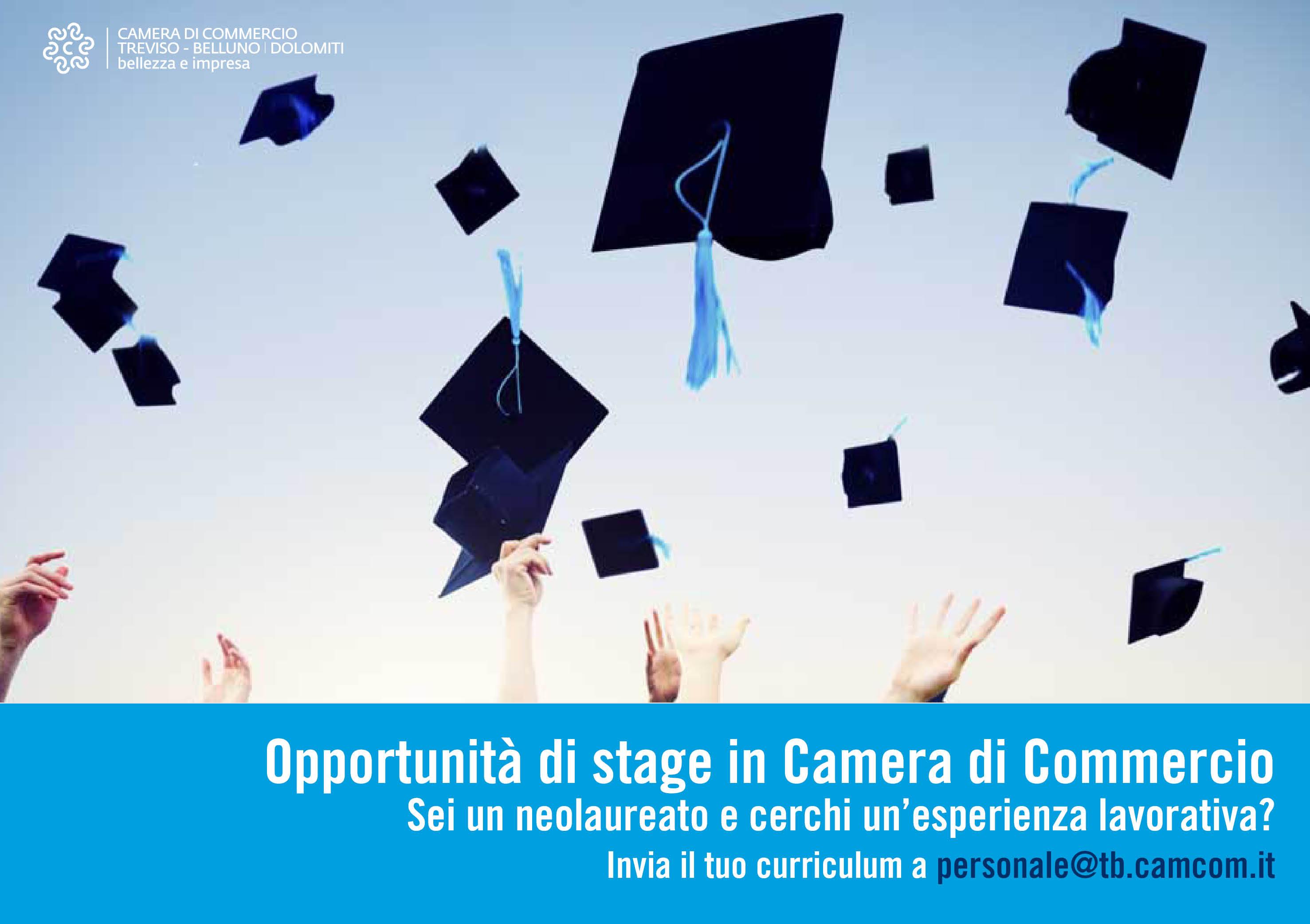 Opportunit� di stage in Camera di Commercio